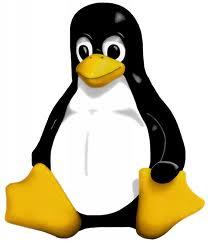 Ubuntu me reconoce solo 2 GB de memoria