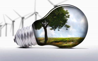 Cómo ser sostenible en una empresa